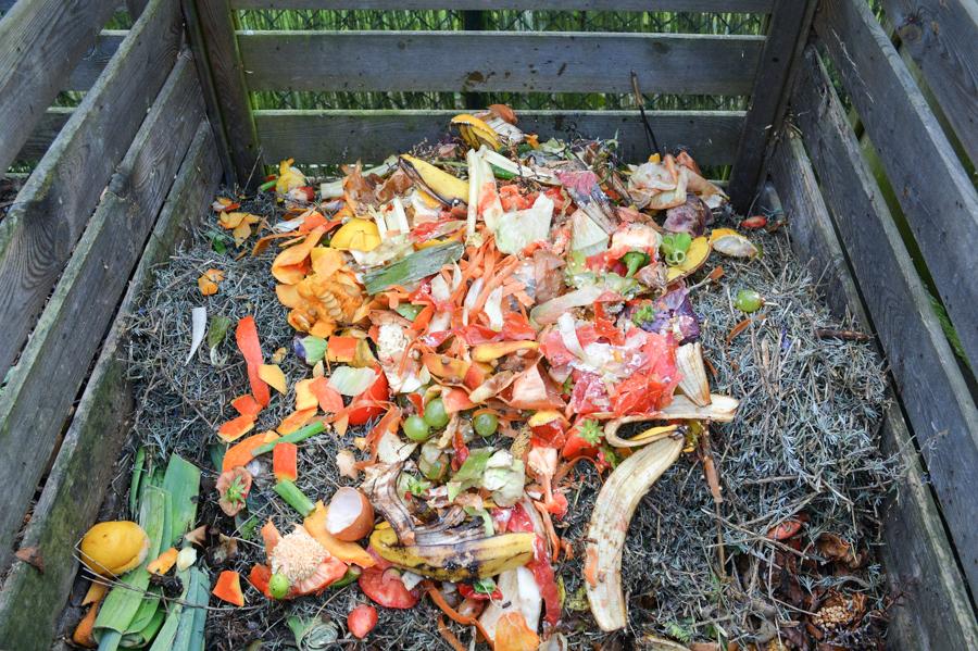 urban compost bin