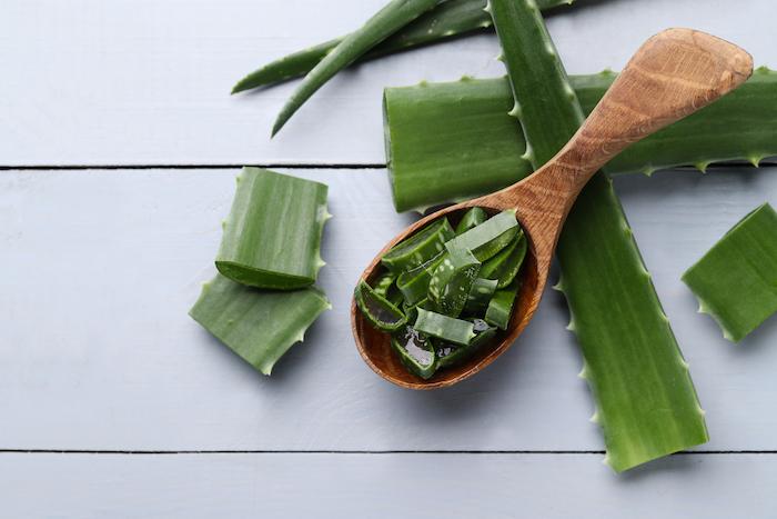 Cut up aloe for homemade aloe vera products